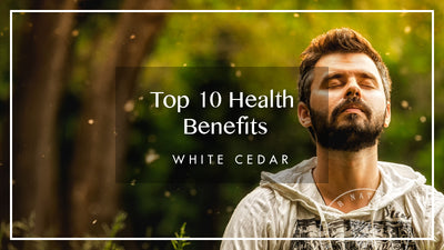 Top Ten Benefits of Hemp Extract