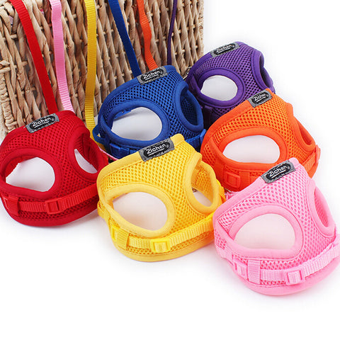 Breathable Mesh Small Dog Harness Nylon Leash Lead Collar Set