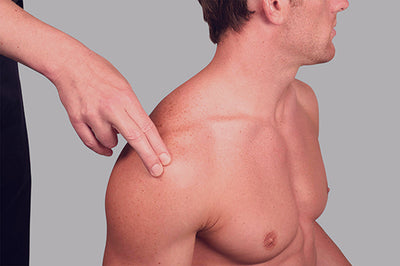 1. Locate the rotator cuff in the front of the shoulder