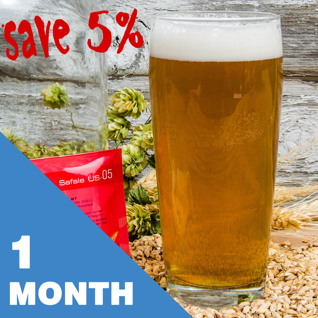 1 Gallon Beer Recipe Kit - 1 Month Subscription - FREE shipping!