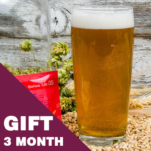 1 Gallon Beer Recipe Kit - 3 Month Gift