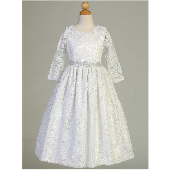 Sleeved Lace Dress with Silver Trim