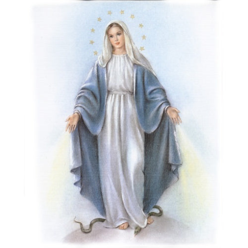 Our Lady of Grace 8x10 Carded Print