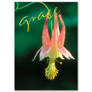 """Grace"" Greeting Card"