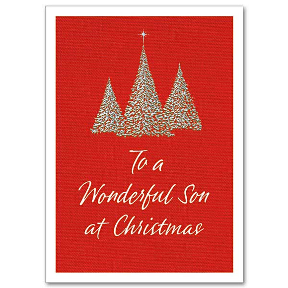 Wonderful Son Christmas Card