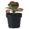 Bendo Plant Stand and Pot - Tall