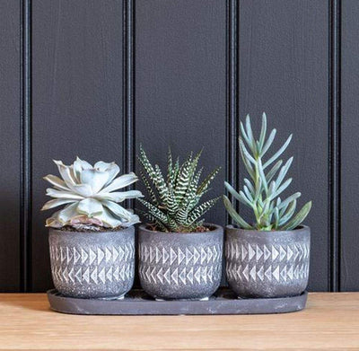 Burgon & Ball Aztec Pots - Set of 3