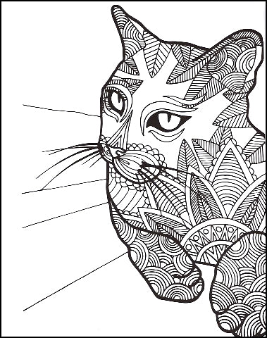 Nice Kitty! Zendoodle Coloring Book