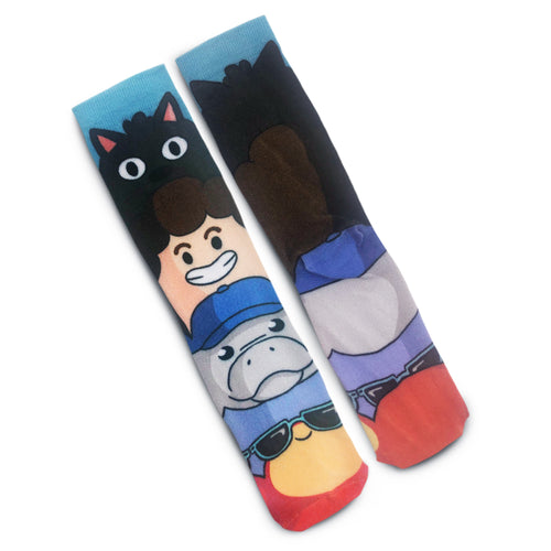 Denis and Friends Socks