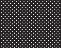 Fadeless Paper - Dots BLK/WHT 48