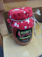 Brandi's Salsa- Hot- Pint Size