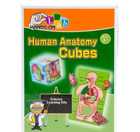 Learn Science Human Anatomy Cubes