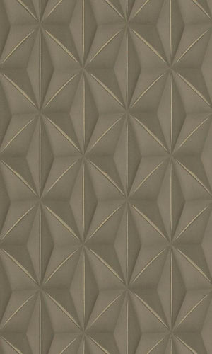 Brown & Gold Delusional Geometries Wallpaper R2925