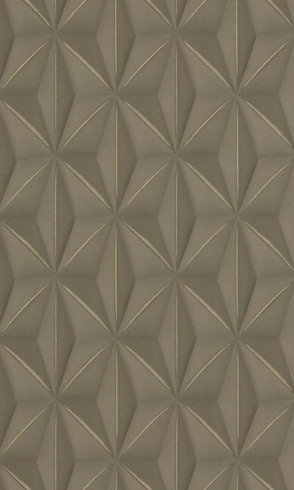 Brown & Gold Delusional Geometries R2925