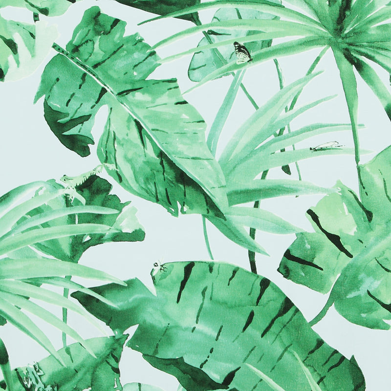 Tropical Natural Green And Baby Blue Leaves Wallpaper R4192