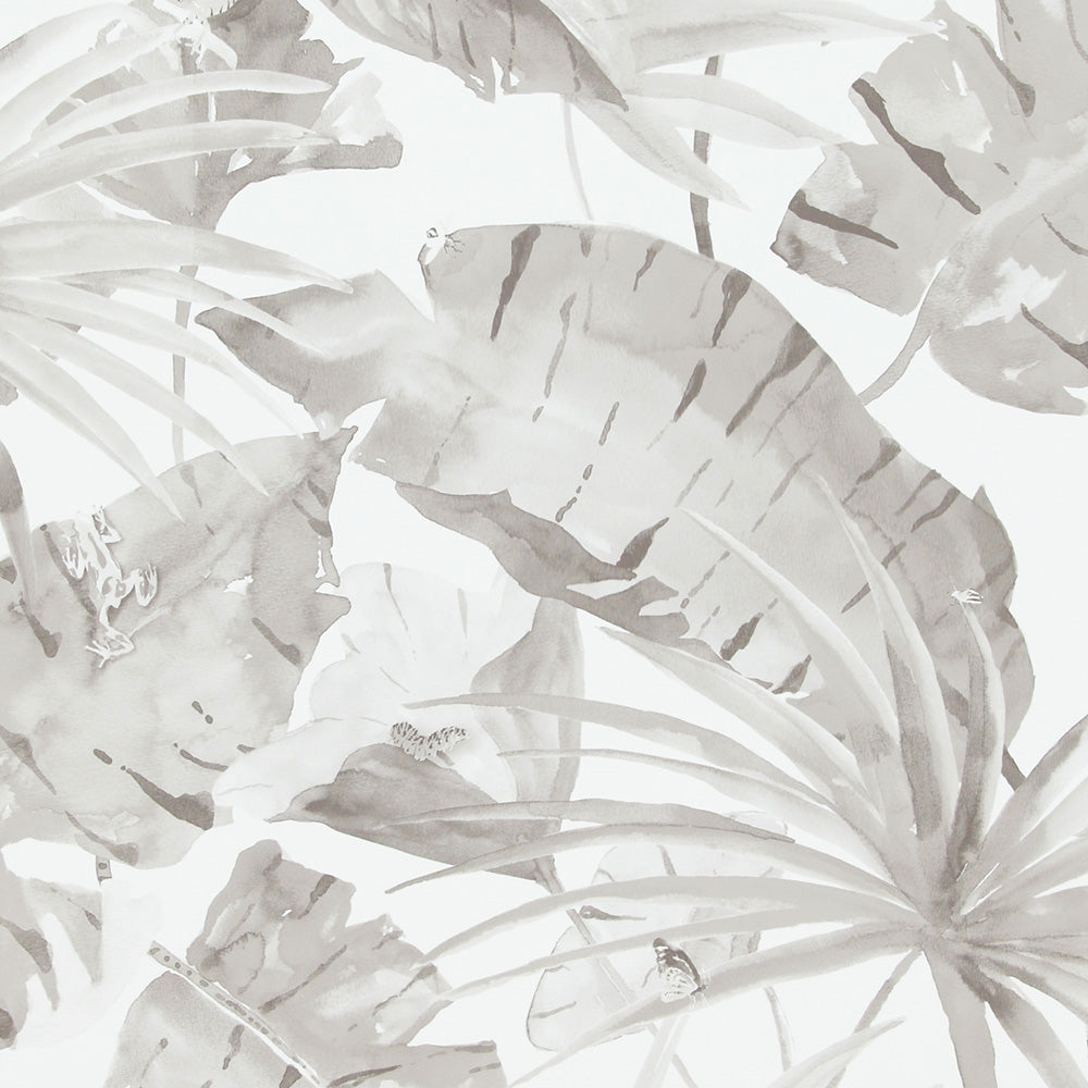 Tropical Natural Grey And White Leaves Wallpaper R4190