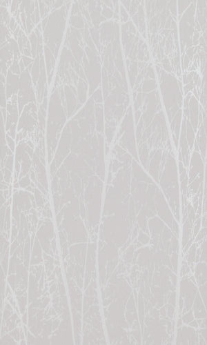 Contemporary Winter Trees Taupe And Pearl Wallpaper R4096