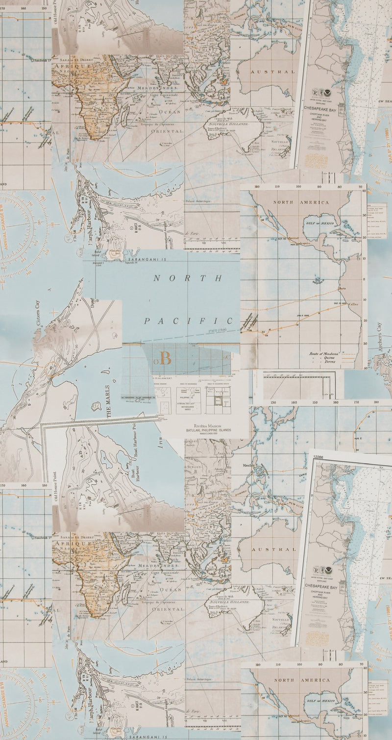 Washed Layer Taupe Pacific Map Wallpaper R4321