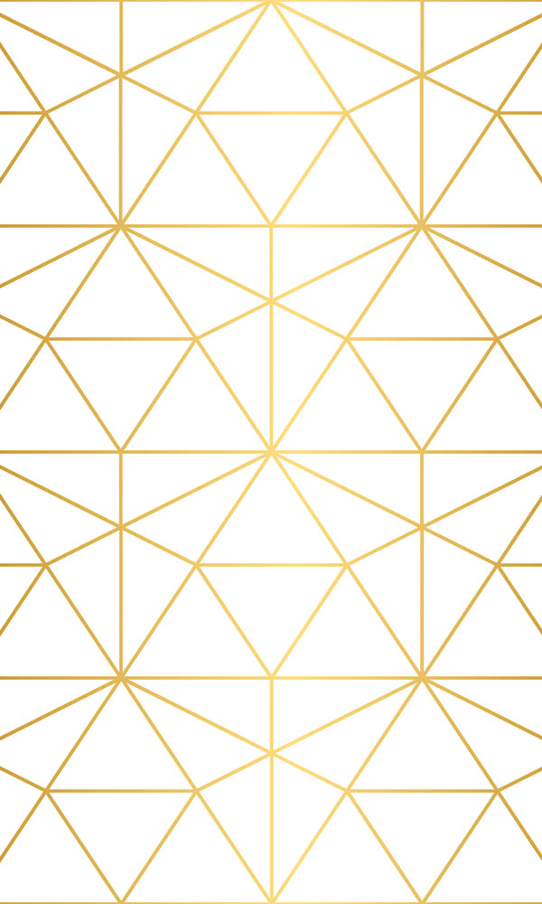 Gold Mesh Geometric Mural Wallpaper M9432. Customized wallpaper. Murals wallpaper. Digital wallpaper. Geometric wallpaper