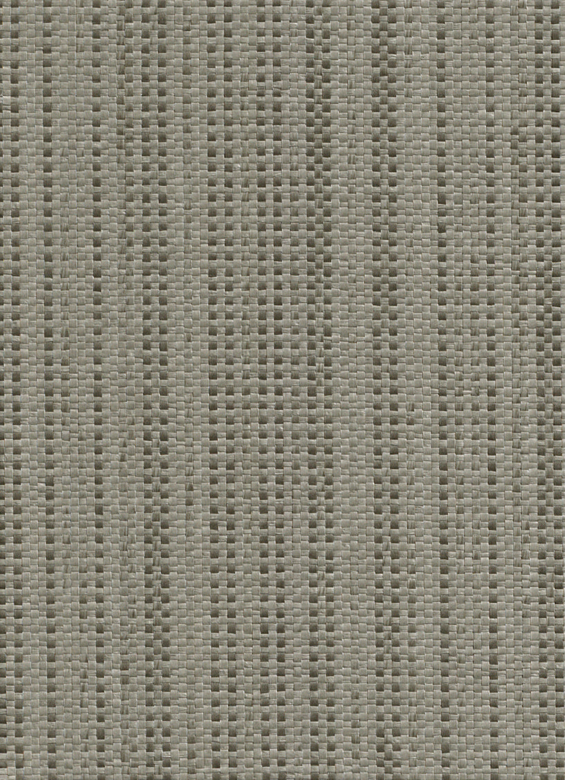 Intertwine Black and Grey Grasscloth Wallpaper R2843