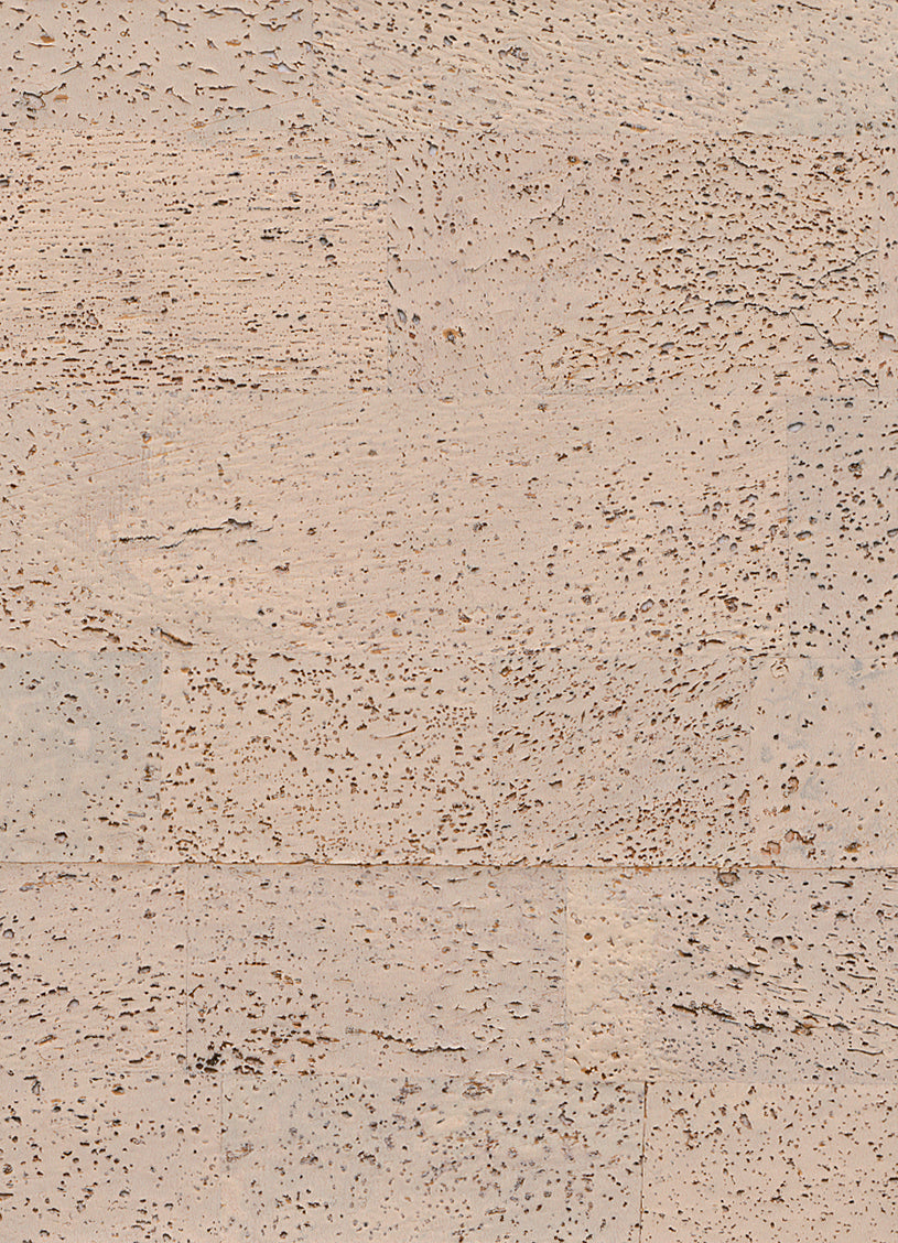 Beige Textured Retro Wallpaper R2817 | Modern Home Interior