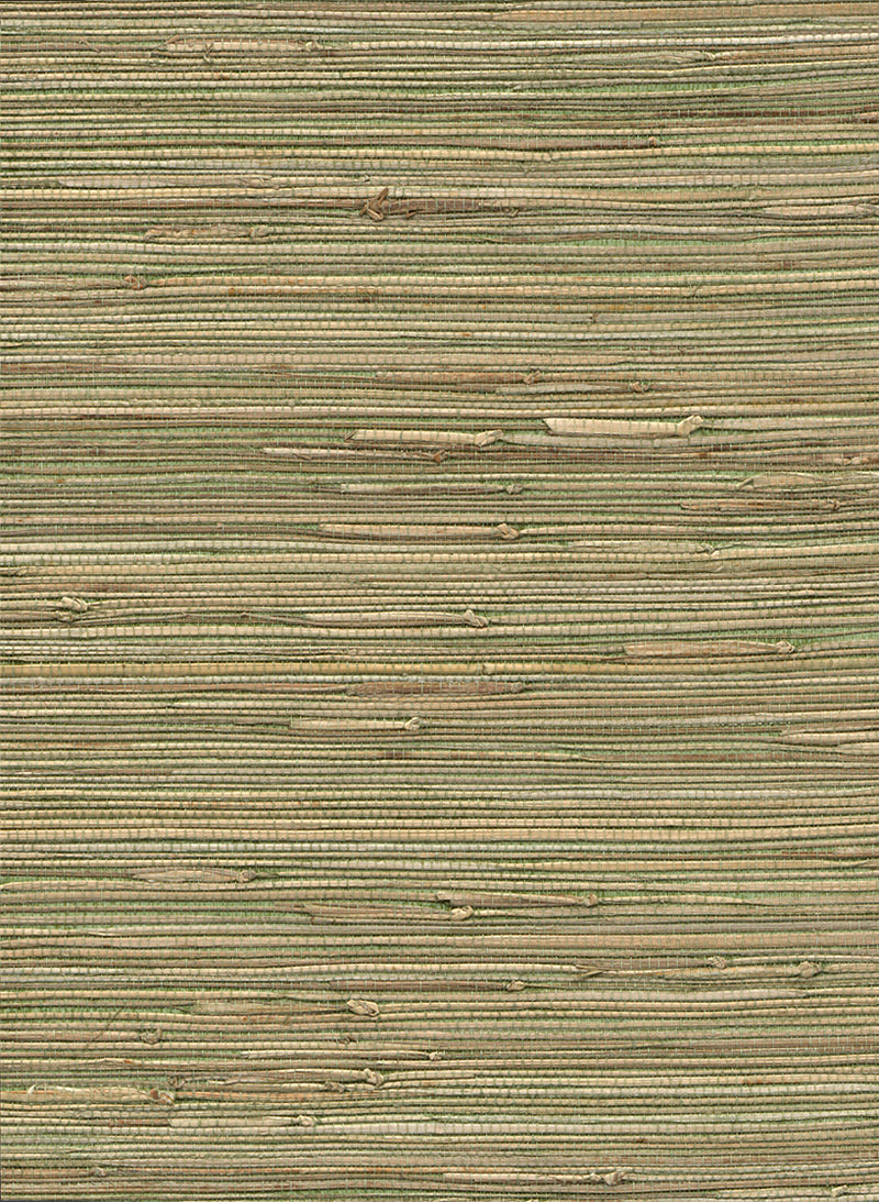Into Nature Green and Yellow Grasscloth Wallpaper R2875