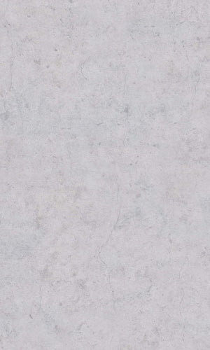 Cool Grey Realistic Raw Plaster Wallpaper R5753