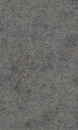 Dark Grey Realistic Raw Plaster R5754