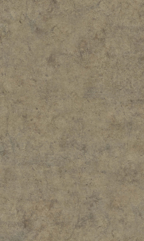 Brown Minimalist Textured Wallpaper R5755