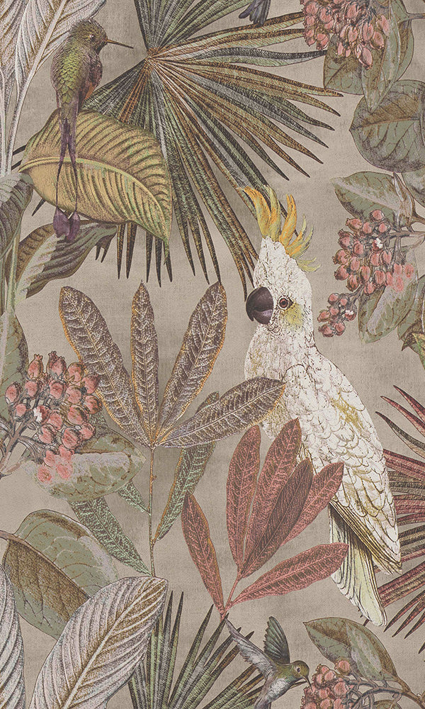 wild jungle forest wallpaper, Tropical Paradise Wallpaper R6038 | Contemporary Home Wall Covering
