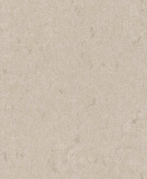 Metallic Scratched Industrial Wallpaper Beige and Silver R4735
