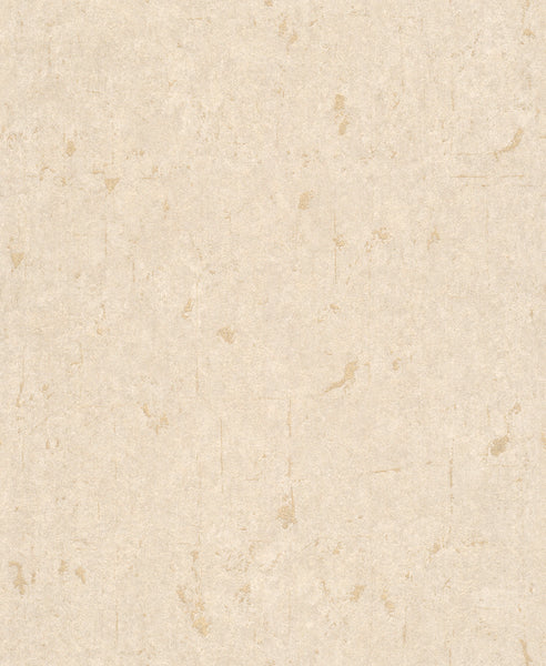 Metallic Scratched Industrial Wallpaper Beige and Silver R4737