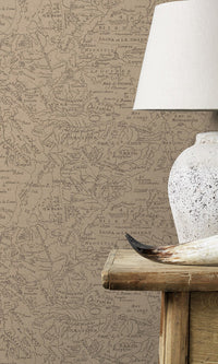 Brown Vintage Lined Map R6153