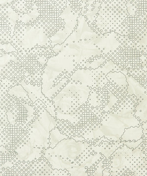Grey Floral Abstract Wallpaper  SR1777 | Modern Home Interior
