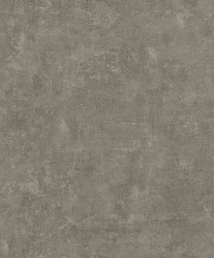 Faux Textured Concrete R5732