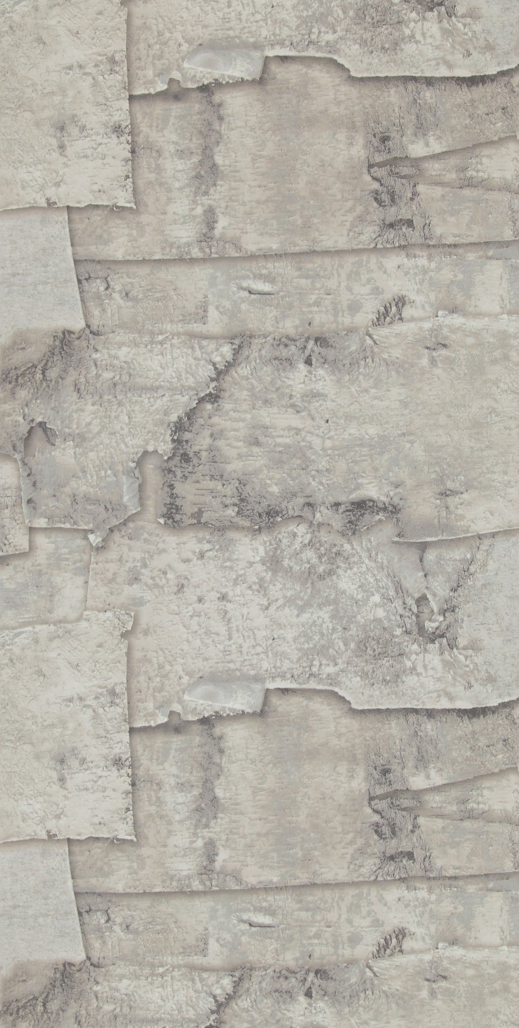 Warm Grey Birch Bark Wallpaper R2578 . Grey Wallpaper. Tree Inspired wallpaper. Bark Tree wallpaper. Concrete Wallpaper. Beige Wallpaper. Faux Wallpaper. Modern wallpaper. Transitional wallpaper. Contemporary wallpaper.