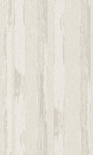 Contemporary Metallic Ivory Paper Birch Wallpaper R4365