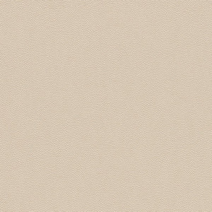 Beige Rough Leather Wallpaper R3656