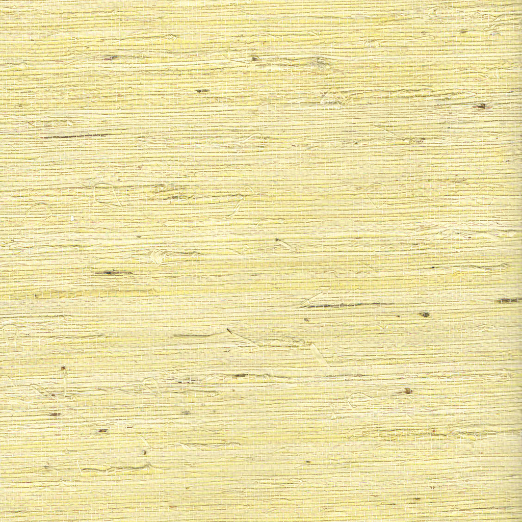 Kapok Goldish Grass-cloth Woven Wallpaper R1983
