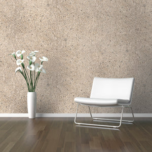 Beige Sand Mica Wallpaper R2203 | Nature Inspired Home Ideas