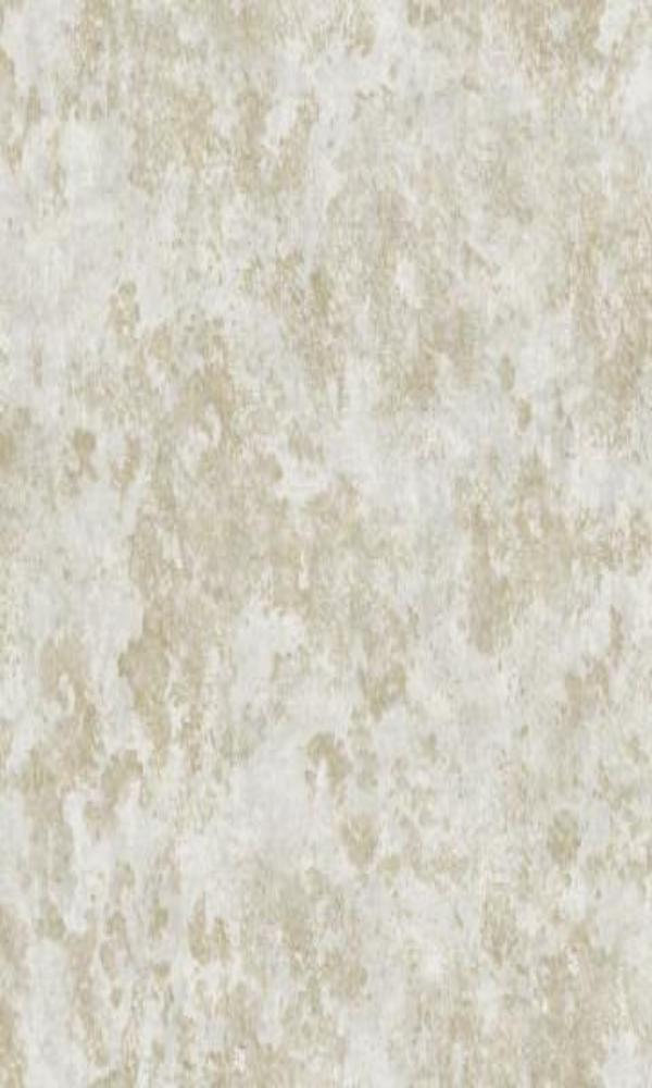 Grey Brushed Concrete Wallpaper R4853