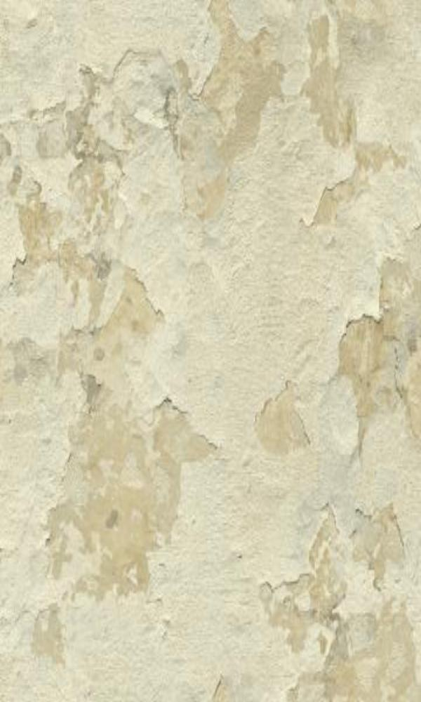 Cloudy Stucco Wallpaper Beige and White R4795