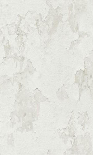 Cloudy Stucco Wallpaper Grey and White R4793