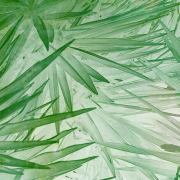Green Fresh Leaves Digital Wallpaper M9311. digital wallcovering.