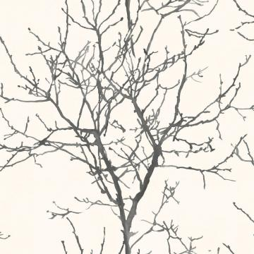 Painted Tree Silhouette Wallpaper Black and Beige R4692