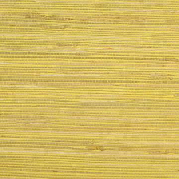 Kapok Lemon Grass-cloth Woven Wallpaper R1987 . Grasscloth wallpaper.