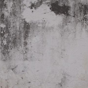 Grey Cold Concrete Mural Wallpaper M9216. Concrete wallpaper. Digital wallcovering. Digital wallpaper. Faux wallpaper.