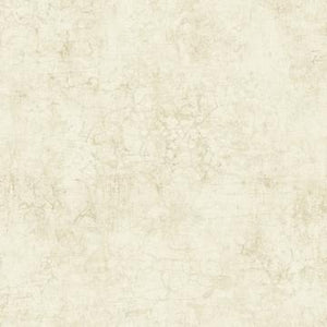 Minimalist Concrete Faux Finish Wallpaper Beige R4830