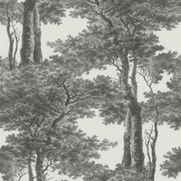 Screen Print Trees Wallpaper Black and White R4755