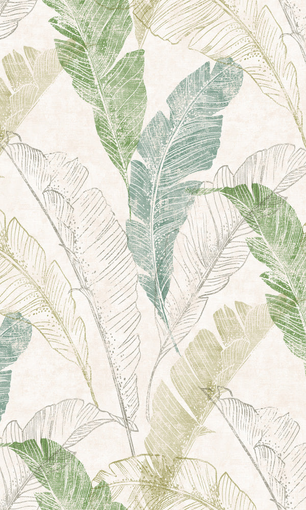 bohemian feathers wallpaper